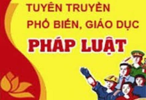 Tuyên truyền PBGDPL tháng 1 năm 2020